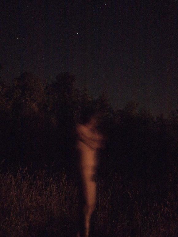 Moonlight Allegro 2